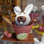 Lapin et son pot